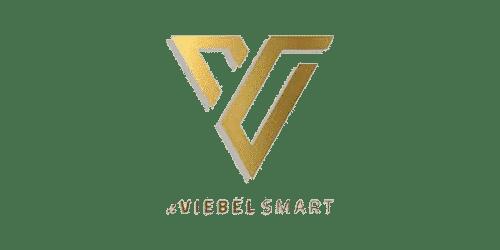 viebel smart