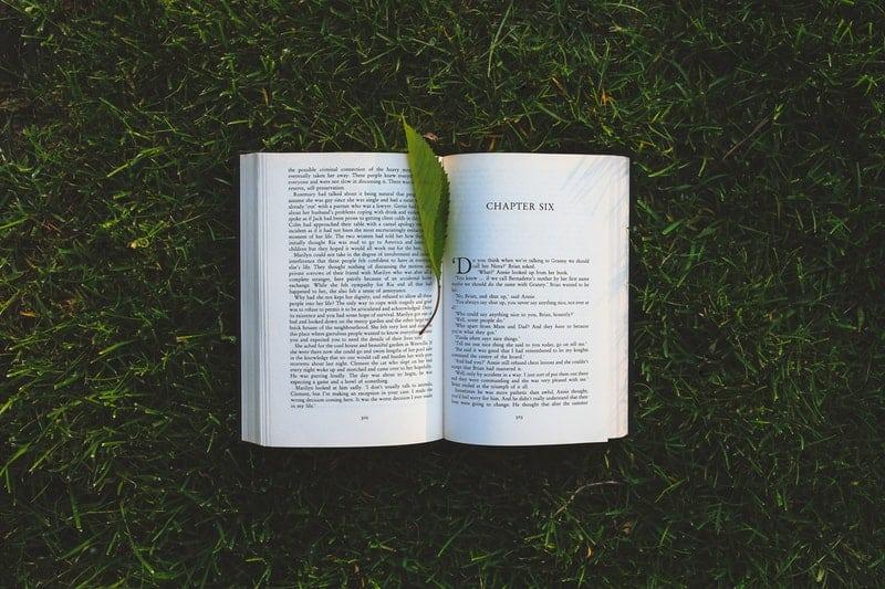 contoh biografi penulis di buku