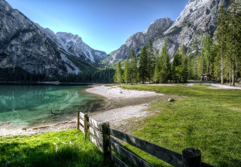fotografi alami